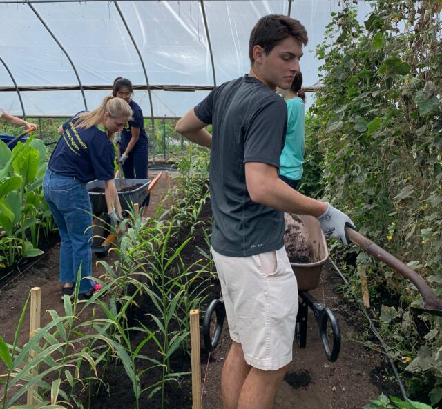 U-M student Jack Light, foreground, spreads topsoil with fellow students, from left to right, Jordan Manley, Sarah Ong and Sarah Pisarczyk. The students are Michigan Community Scholars Program members and were working at Growing Hope Urban Farm in Ypsilanti. (Photo by Emily Welch)
