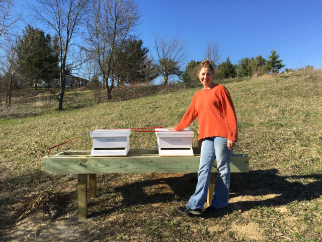 Jennette Green, a clinical analyst for the Department of Family Medicine in the Medical School, took up beekeeping at her Manchester home several years ago. (Photo courtesy of Jennette Green)