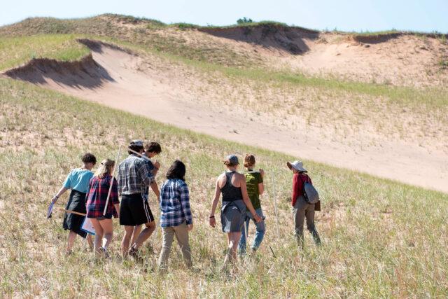 Photo of U-M undergraduates performing fieldwork in a flagship northern Michigan dune habitat.