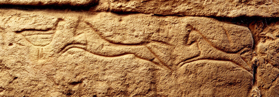 Two horses and a bird are among the graffito carved into the El-Kurru funerary temple in Northern Sudan.