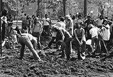 On May 19, 1972, students dug bomb craters on campus to protest the Vietnam War. Read about some of the other things that happened in U-M history during the weeks of May 4-25.